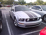 Mustang na Floride (popa81)