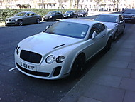 Bentley (ohen7us)