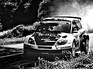 Barum Rally 2011 (Bigg.I)