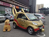 Smart ForTwo Lindt (Lodyha)