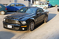 Ford Shelby GT500KR (mikerCZ)