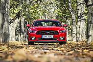 Mustang (L0GAN)