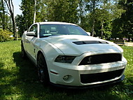 Ford Mustang Shelby (Filda)